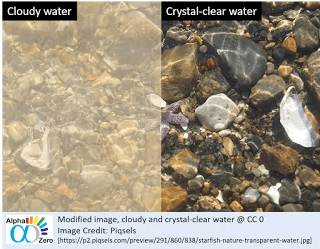 Cloudy and crystal clear water demonstrate the physchological effect and immune system for COVID-19 treatment
